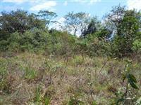 Area para reposição ambiental de reserva legal bioma cerrado no Estado de SP