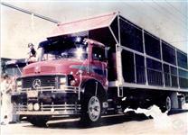 Caminhão  Mercedes Benz (MB) Modelos  ano 68