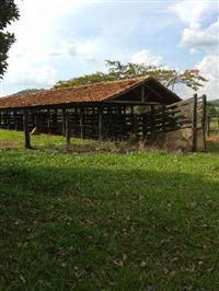 Fazenda  a 17 km de Goianira