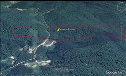 32,60 hectares de Mata