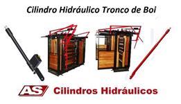 CILINDRO HIDRÁULICO PARA TRONCO DE BOI
