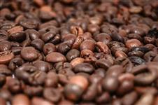 Café Especial 100% Arabica