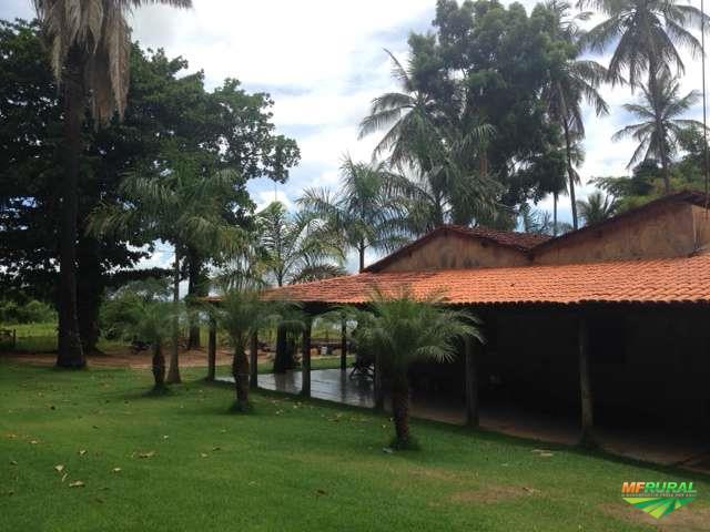 Fazenda com irrigação pivo central total 484 ha