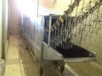 Equipamentos completos para frigorífico de aves