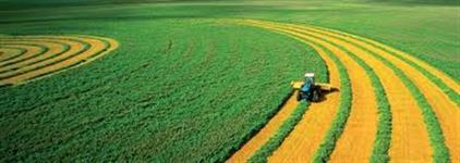 Crédito para Imóvel e Produtor Rural