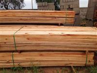 Madeira serrada de eucalipto