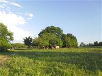 Fazenda Municipio de Bonito/MS