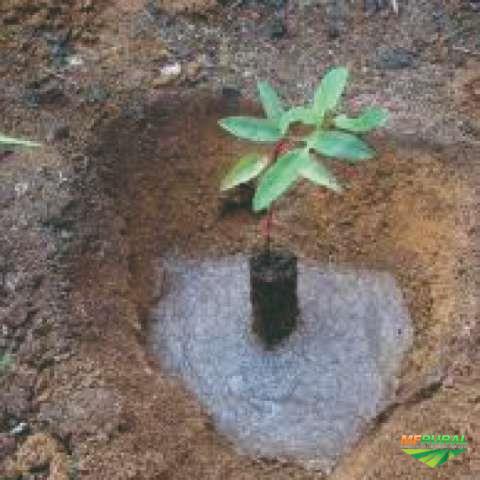 GEL PARA PLANTIO - HIDROGEL
