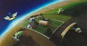 Consultoria (Projetos para Plantio e Colheita de Cana de Açucar)