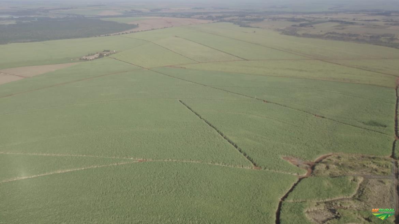 Fazenda Município de Guatapará