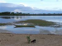 Fazenda na Bahia Georreferenciada