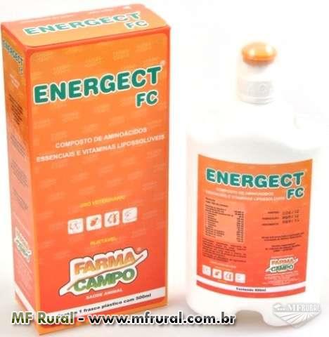 Energect fc novo conceito em atividade metabolica