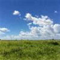 Avaliação de Imóveis em Mato Grosso