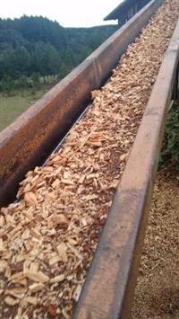 Entrega de (biomassa) Cavaco de Pinus para Caldeiras