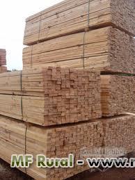 Madeira de Pinus Serrada Bruta