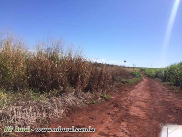 Fazenda 1.500 Ha em Itumbiara-GO