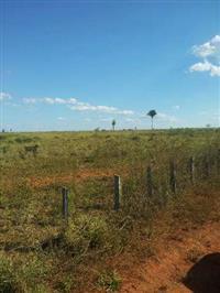 Fazenda do Norte MT, Xingu!!