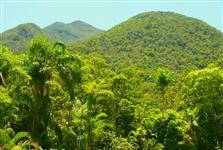 Área para Compensação Ambiental UNIDADE DE CONSERVAÇÃO -MATA ATLÂNTICA-SP C/GEO