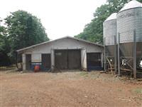 Sítio/Granja com 2 aviários automáticos com integração ativa e casa de funcionários. Ótima renda
