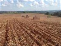 Fazenda pronta com área total de 1236 hectares no Oeste de Santa Catarina