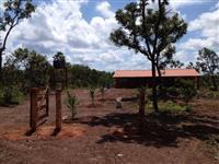 Fazenda com 10 mil hectares no Tocantins