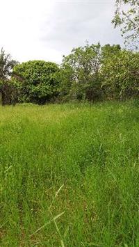 fazenda 86 ha em joao pinheiro mg