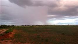Sítio Agrícola de 50.000 m² (5 hectare)