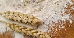 Farinha de trigo Argentina 000 e 0000 atacado
