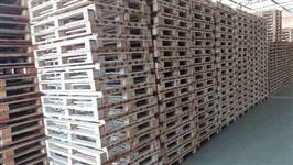 Pó de serra Madeira Eucalipto para paletes