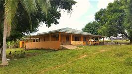 Vende-se fazenda na região Roxinho, excelente para pecuaria de ingorda, piscicultura, regiao de mata