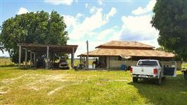Vende-se fazenda com 2215 hectares toda titulada, região de Alto Alegre excelente para pecuária