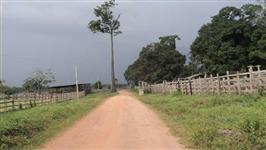 Fazenda de 823ha - Santarém/Pa