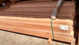 Pinus serrada