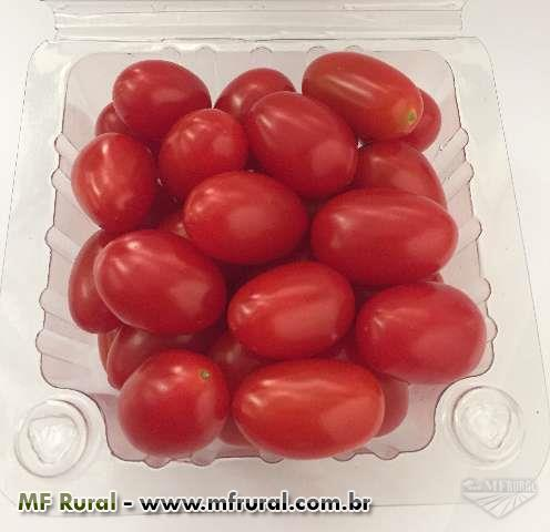 TOMATE SWEET GRAPE