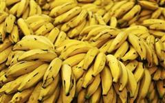 Bananas Yanmille
