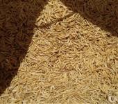 Vendo e compro palha de arroz