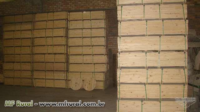 Exportação de Pallets e Madeira para Europa