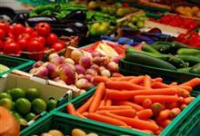 Atacadista Frutas e Legumes Ceasa RJ