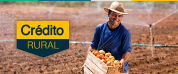 Credito Rural com Garantia Real, Capital de giro, Financiamento e Refinanciamento.
