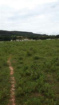 Fazenda em Caiapônia Goiás