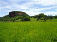 fazenda troca por fazenda no mato grosso do sul, região de 3 lagoas