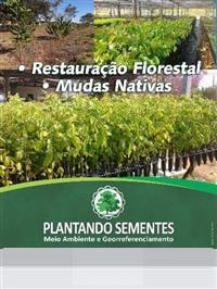 MUDAS NATIVAS CERRADO E DE TRANSIÇÃO AMAZÔNICAS