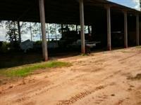 Vendo Fazenda em Rondônia