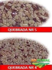 CASTANHA DO PARÁ (tipo FARINHA E QUEBRADA)