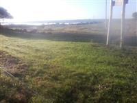 Área rural de 1700 hectares no estado do Rio Grande do Sul ótimo para gado e plantio de soja