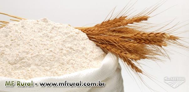 Vende-se Farinha de Trigo Importada