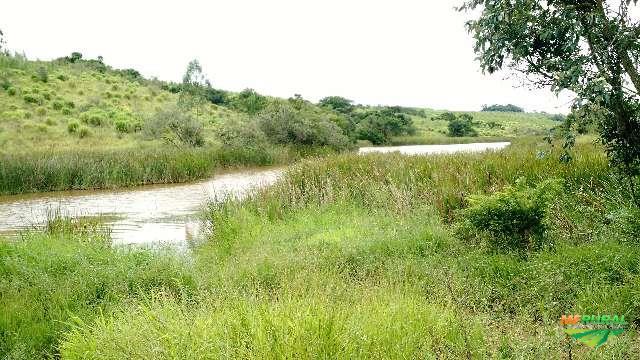 Sítio ótimo de terra e água em Itapetininga - Propriedade com cachoeira  - Raridade.