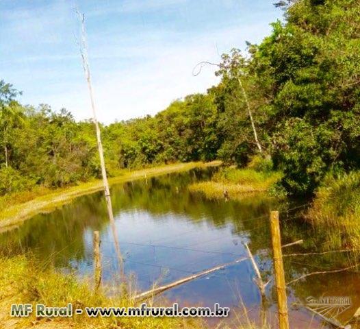Fazenda 44 hectares em Alexânia - Goias