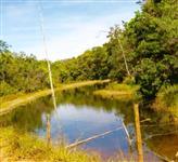 Fazenda 44 hectares