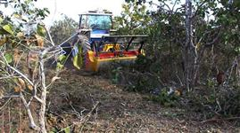 Triturador Florestal para Tratores Agrícolas entre 65cv ate 90cv